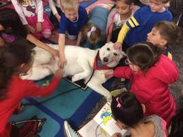 Tail Waggin' Tutor to Visit Peck Elementary